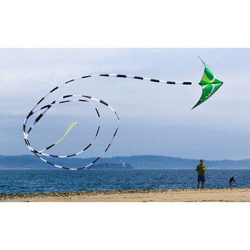 Prism 75ft Tube Kite Tail
